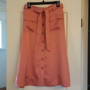 NWT Banana Republic Skirt